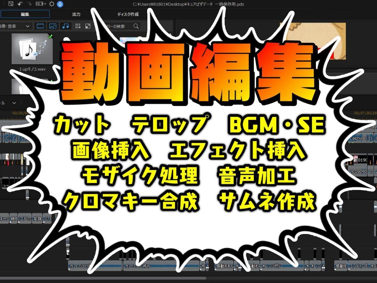 低価格!YouTube向けに動画編集をします 最低金額3000円!サムネイル作成は無料で行います!