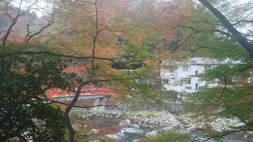 日本一の紅葉香嵐渓のお写真提供します