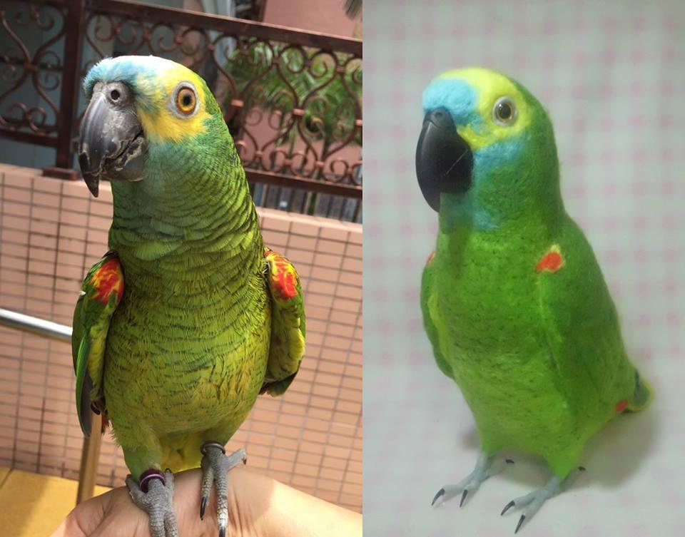あなたの愛鳥をモデルに羊毛の小鳥を制作します 自分の愛鳥グッズを諦めていた方必見!ボウシ・バタン・ヨウム等