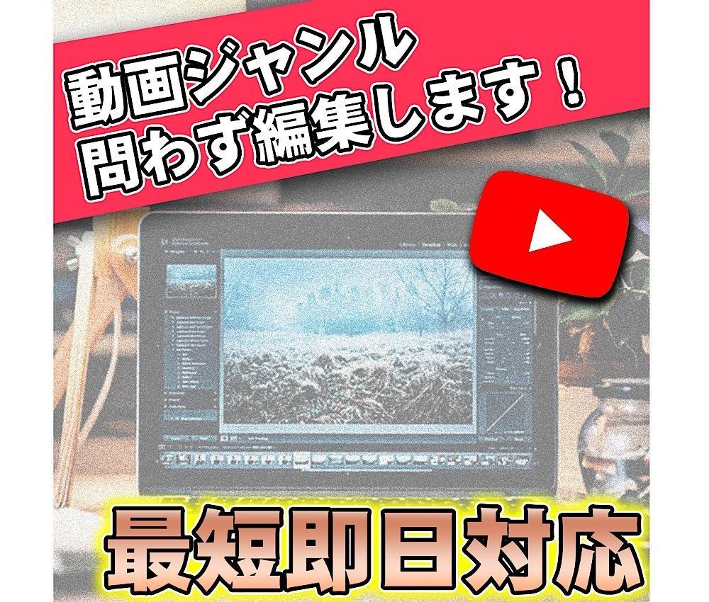 100万再生、登録者10万の編集マンが編集します Youtubeや記念日動画などを本格編集致します!!