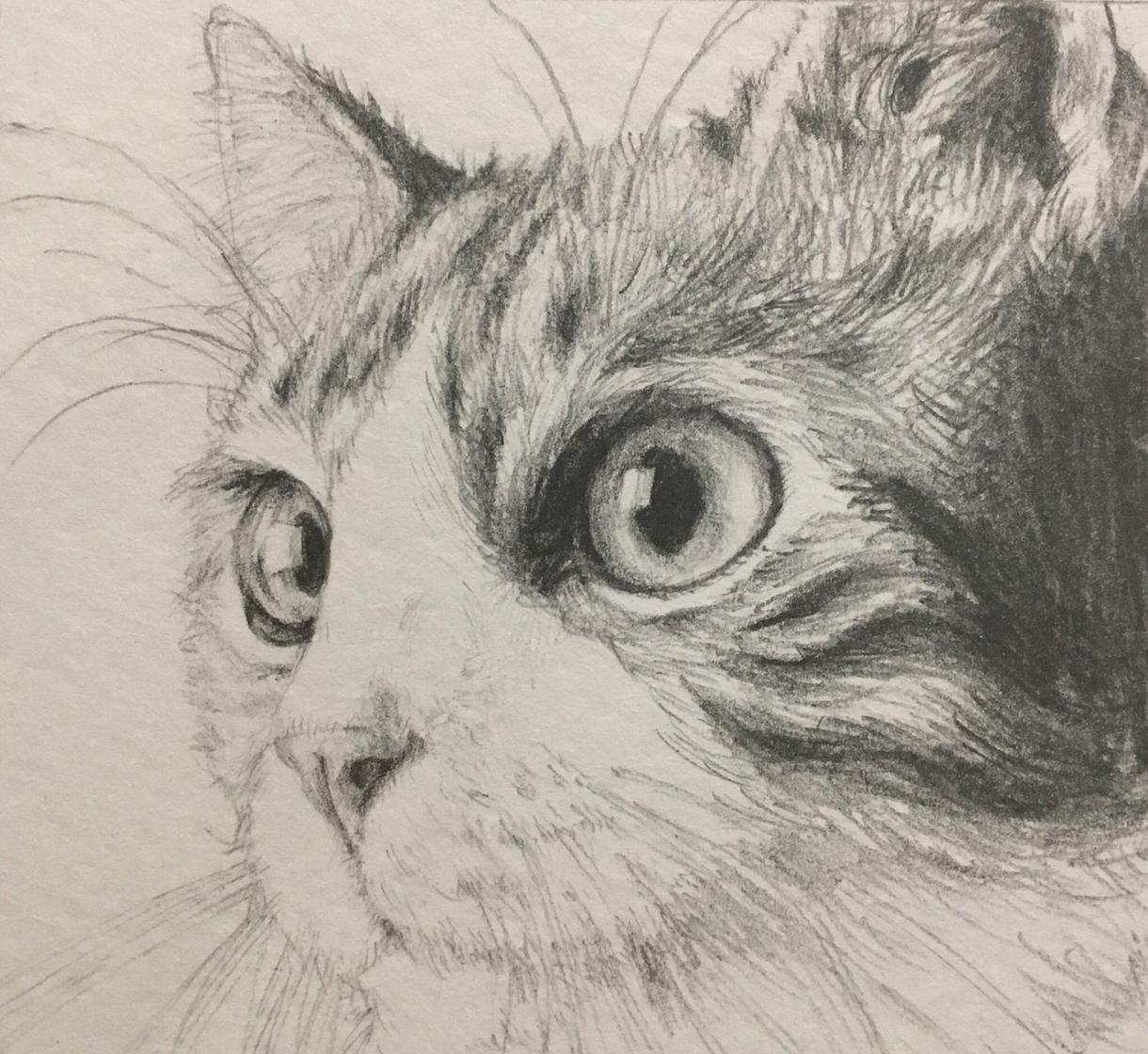 お好きな画材(5種の内)でアイコンを描きます デジタル、水彩、色鉛筆、コピック、カラーペンから選べます!