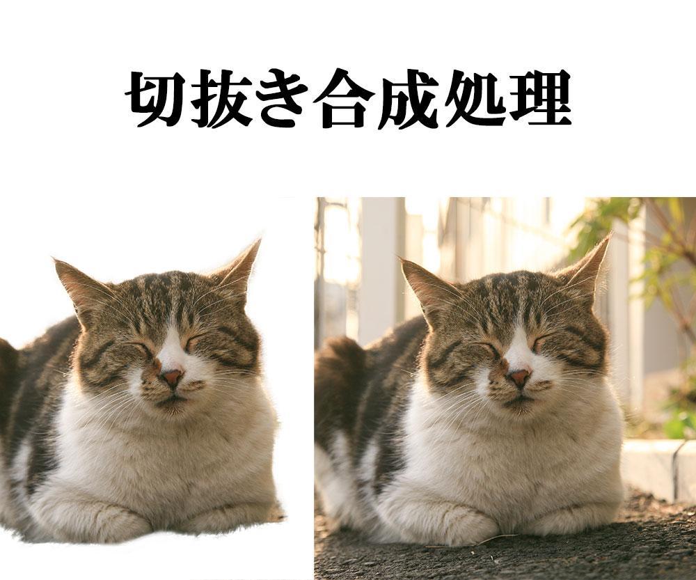 写真画像の切抜き編集作業致します。(その他の編集もご相談下さい) イメージ1