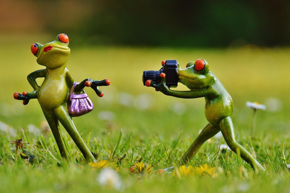 写真撮影のお悩みにお答えいたします 写真撮影のことなら何でもOK!【写真撮影のコンシェルジュ】 イメージ1