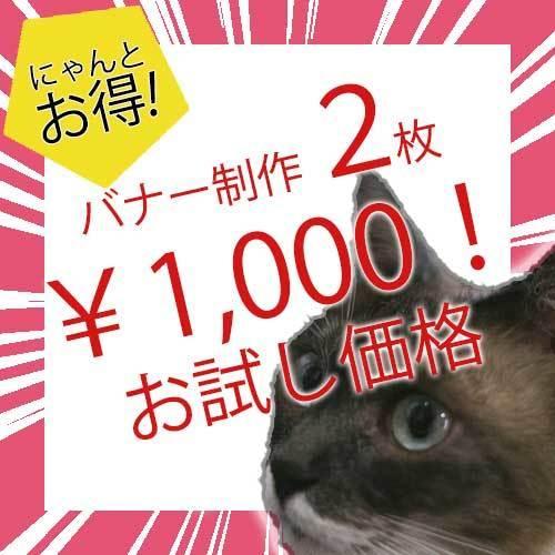 格安!バナーALLジャンルOKバナー制作します 1枚500円! 合計2枚 1000円 バナー イメージ1