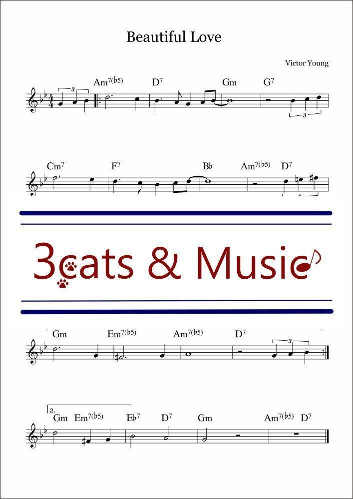 ジャズボーカル譜面を作成します 楽器演奏者に渡す用のジャズボーカル譜面を作成します イメージ1