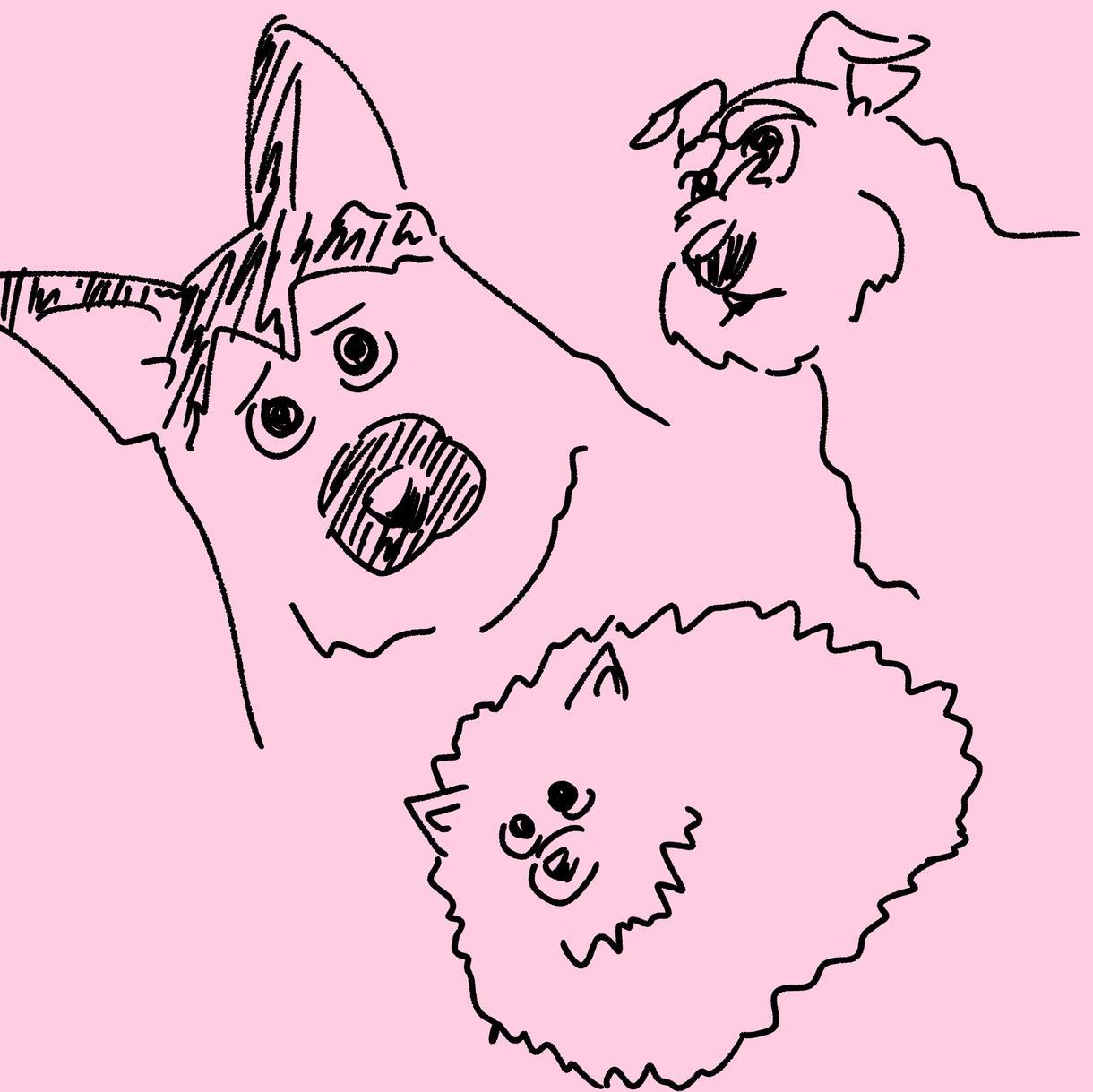 ペットのイラスト描きます