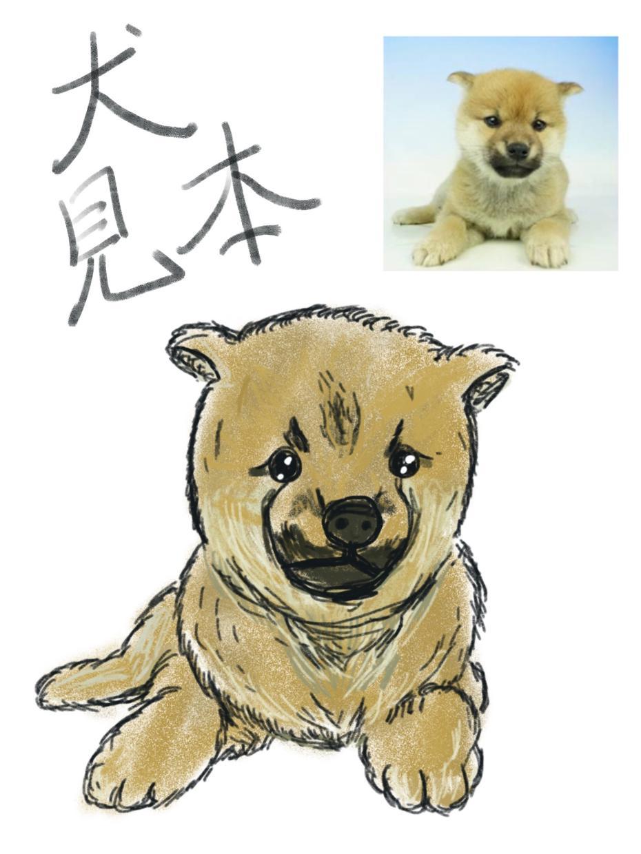 愛するペットのちょっとリアルな似顔絵描きます プロのデザイナーが描くちょっと味わいあるデッサン似顔絵。