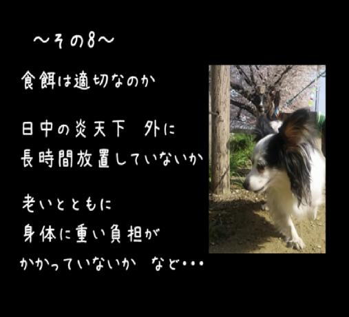 【売上は寄付】あなたの愛犬で『犬の十戒』のフォトムービーを制作致します!