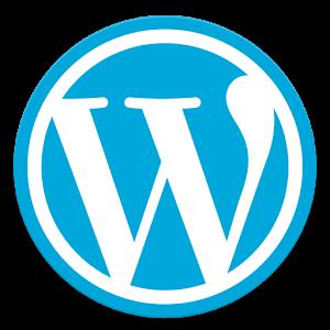 Wordpressで、あなただけのサイトを作ります 作品を載せるサイトを作りたい、ブログをしたい。お任せ下さい。