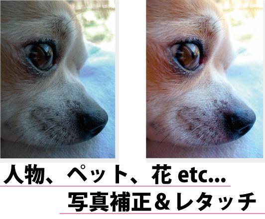 【無料お試し可!】思い出の写真etcをより鮮やかに! イメージ1