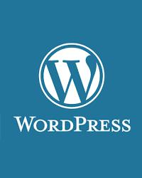 Wordpress でブログ書きたい方教えます ワードプレスのブログで儲けたいけど、設定やSEOに困る方へ