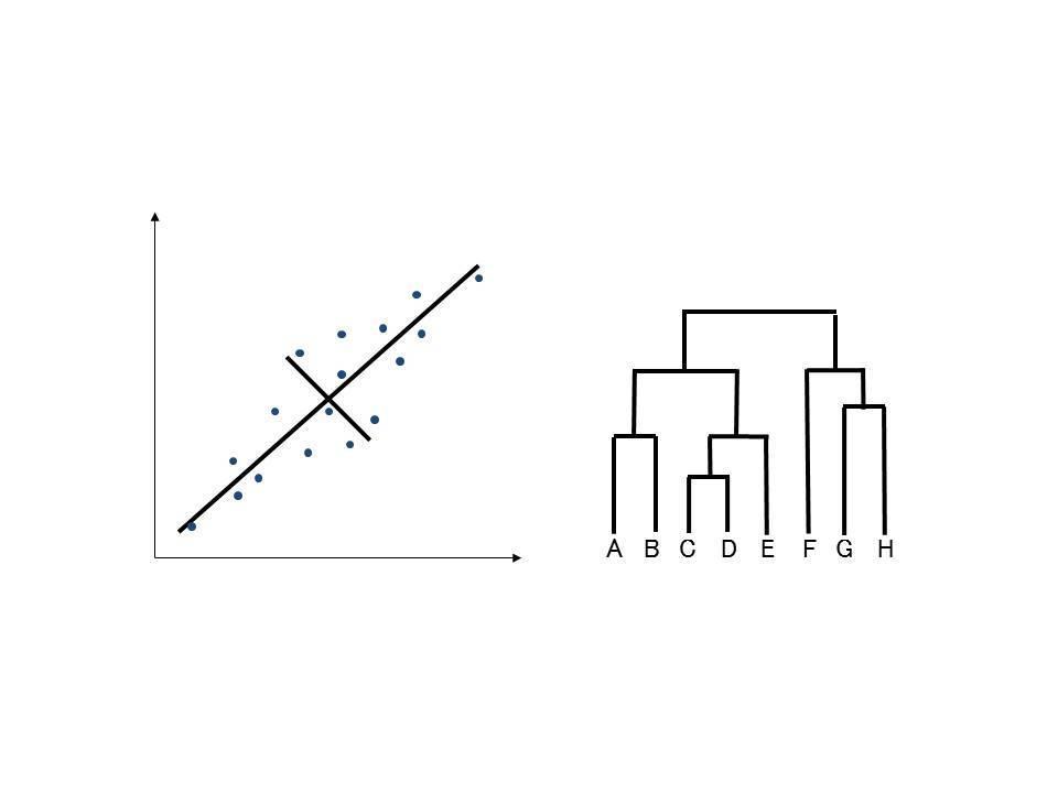 各種データの統計分析致します 多種多様な解析に対応することが可能です イメージ1