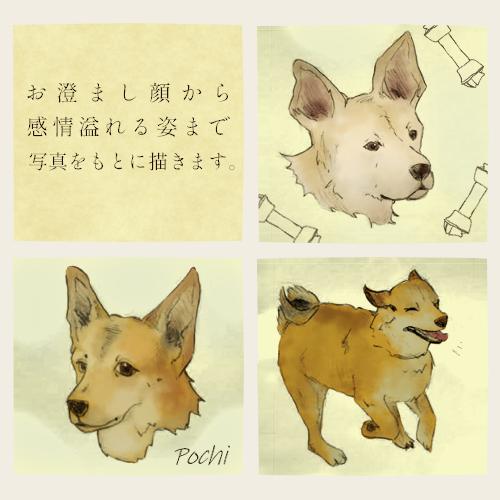 あたたかい絵柄で動物を描きます 好きな動物や愛しい家族の一員をイラストに