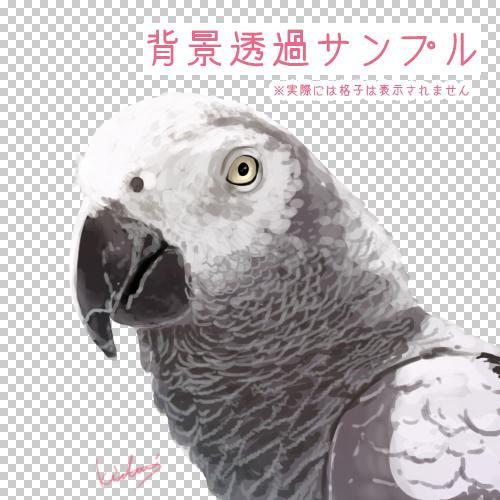 ペット、動物のアイコンお描きします Twitter等のSNSやブログのアイコンにどうぞ