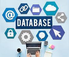 ファイルメーカーのシステム開発します Windows、Mac、iOS、web、お任せ下さい!