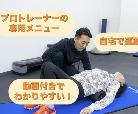 自宅で運動+動画付き!運動メニューお作りします プロトレーナーが身体の悩みに合わせた専用メニューを作成! イメージ1