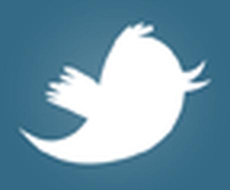 twitterのフォロアーを確実に増やす方法をお教えします イメージ1