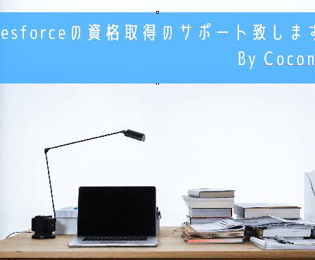 現役SaleforceSEが資格取得のコツ教えます Salesforceの資格保持者が資格合格へのコツを伝授! イメージ1