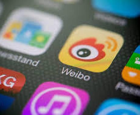 I定額中国語I 気になるあの人のSNS全翻訳します 【一か月】【定額】【翻訳し放題】【weibo】【QQ】 イメージ1