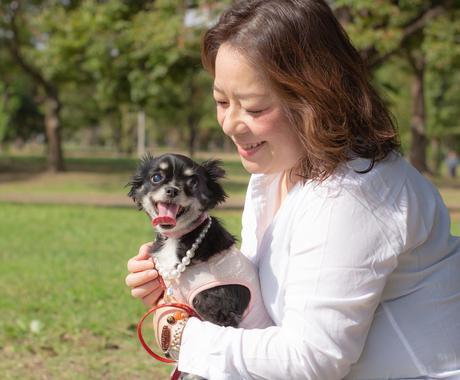 あなたの大切なペットの心の声をお届けします 元トリマー・ペット介護士の資格を持つ動物のプロにお任せ! イメージ1