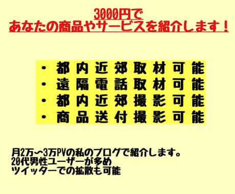 3000円であなたの商品、サービスを紹介します 1000字程度。画像作成込み。月2〜3万PV イメージ1