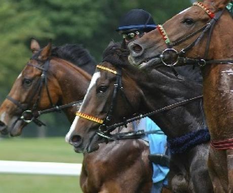 馬連と枠連の3点で今日から競馬投資ができます 知識も予想も不要!初心者でも今すぐ競馬投資が可能です! イメージ1