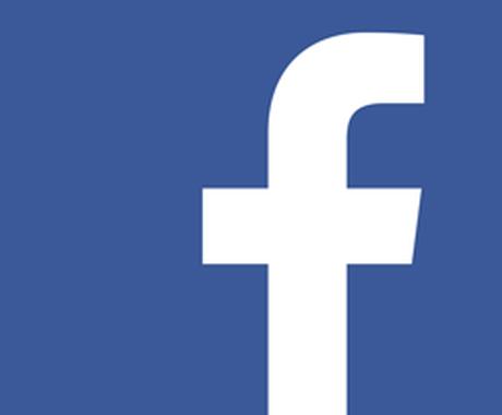 Facebook広告の運用代行します 優秀なFacebook広告を試してみたいあなたへ イメージ1