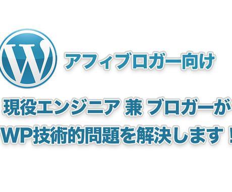 ブロガーがWordPress技術的問題解決します クレカ系アフィブロガーがWP技術的問題を解決します! イメージ1