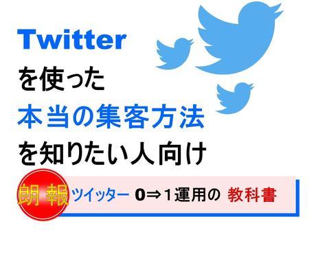 ツイッター集客の『本質的な』運用術を大公開します Twitterフォロワー爆増!!/拡散/宣伝/集客/稼ぎたい イメージ1
