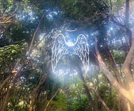 あなたの悩みに心の奥まで寄り添います 天の存在とチャネリングし、貴方へ光のメッセージを届けます。 イメージ1