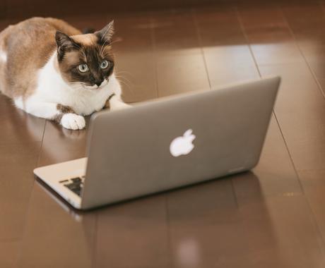 WEBページをデータへ!スクレイピングを行います 情報収集に時間をかけている方!日々の仕事を自動化したい方必見 イメージ1