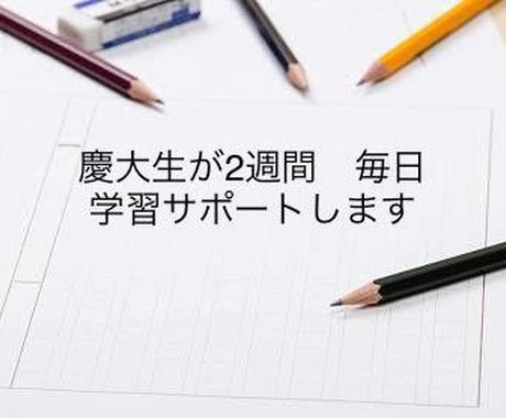 現役慶大生が英語学習を2週間サポートします 質問対応はもちろん、生活、学習をコーディネート イメージ1