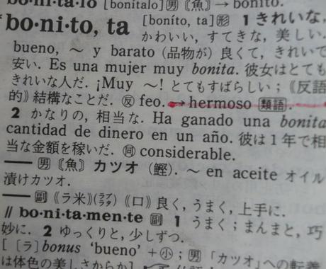 大切なお店や商品にスペイン語でネーミングます 語感の響きのいいスペイン語にて、元気なネーミング考えます イメージ1