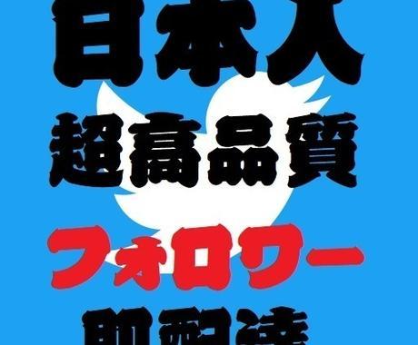 Twitterの日本人フォロワー100人増やします ツイッターのフォロワーもしくはいいねもしくはRTの増加 イメージ1