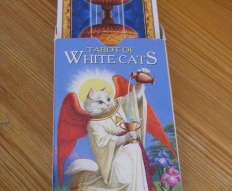 猫のタロットカードで占います 可愛い猫のタロットがお力になります イメージ1