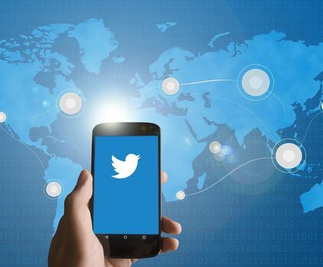 Twitterブランディングと集客法を学べます Twitter集客で食べていけるだけのお金を稼げます。 イメージ1
