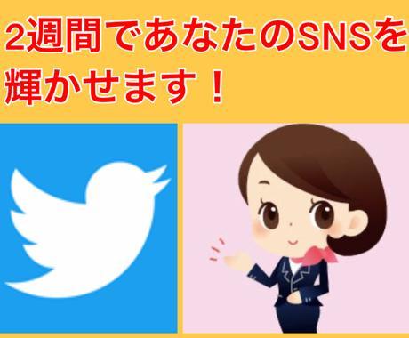 2週間でTwitterノウハウをコンサルします 経営コンサルが贈る徹底的なツイッターコンシェルジュサービス イメージ1