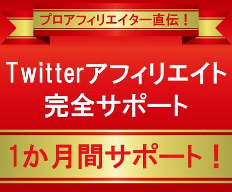 Twitterアフィリエイト完全サポートします 1ヶ月間サポート!プロアフィリエイターが伝授! イメージ1