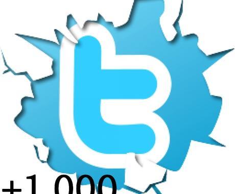 Twitter1,000フォロワー追加サービス イメージ1
