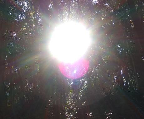 ドラゴンレイエネルギーヒーリングします 太陽エネルギーと龍のエネルギーで浄化し癒やします松果体活性化 イメージ1