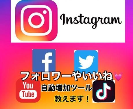 11月30日まで❗️自動増加ツール教えます Facebook、Twitter、YouTubeも対応❗️ イメージ1