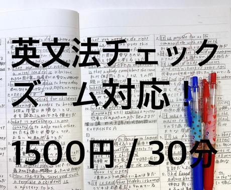 英語文法チェックします 初心者英語〜ビジネス英語まで。ズーム対応です。 イメージ1