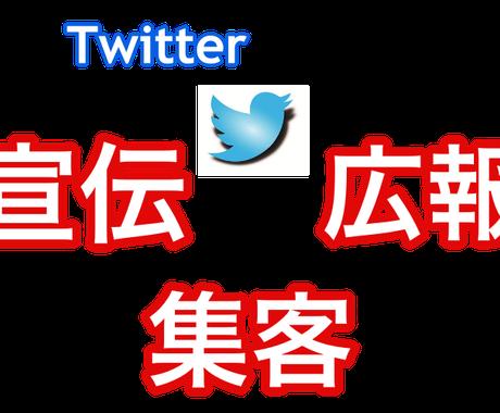 実績画像あり。ツイッターの集客・宣伝方法を教えます アクセス倍増!Twitterで集客・宣伝したい人向け イメージ1