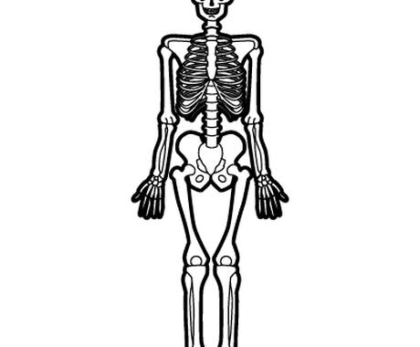 病院での画像診断検査(レントゲン/CT/MRI/PET/マンモグラフィー等)の疑問にお答えします イメージ1