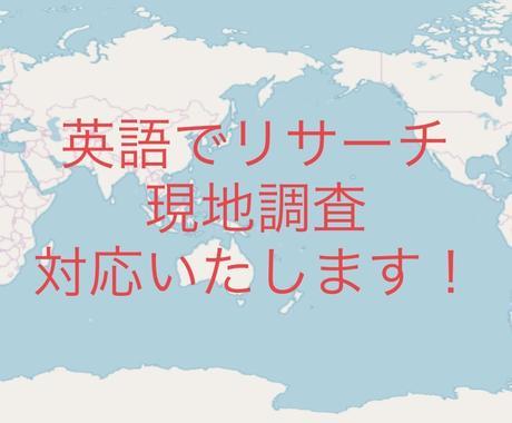 英語でのリサーチ業務、現地調査いたします 英語、海外情報、リサーチ、海外、代行 イメージ1