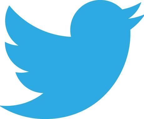 Twitter フォロワー5000強 一日で増えます イメージ1