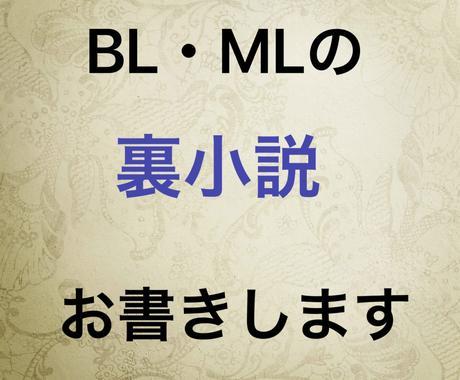 BL、MLの裏小説お書きします 裏BL小説オーダー募集致します! イメージ1