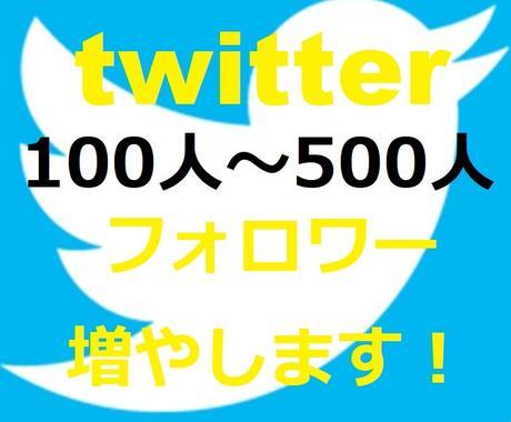 フォロワー数、100人〜500人超えまで増やします 完全日本人ユーザー増!Twitter最大級のグループ運営!! イメージ1