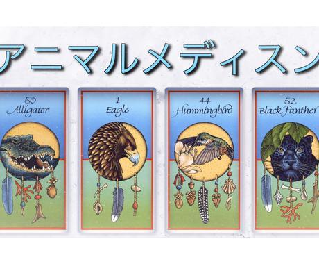 驚異のレア占い!アニマルメディスンで占います 動物が教えてくれる自然界からあなたへのメッセージ イメージ1