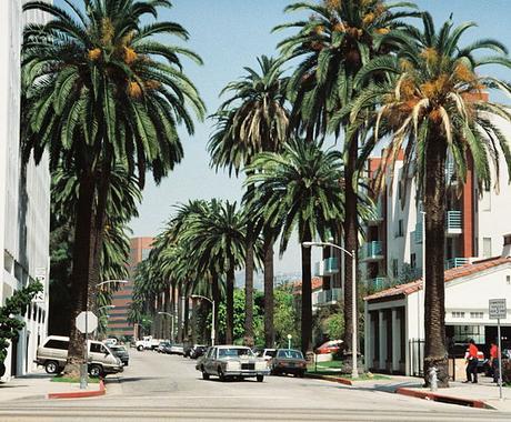 ロサンゼルス旅行 プラン見直し おすすめ情報 予約補助 イメージ1